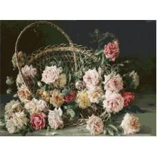 Красотата на розите