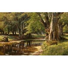 В горската дъбрава
