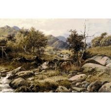 Каменист хълм